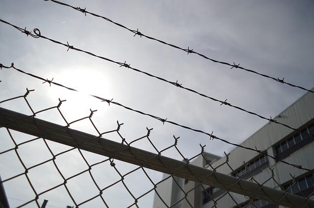 Więźniowie będą rozwijać bartnictwo | Portal pszczelarski www.pszczoly.eu