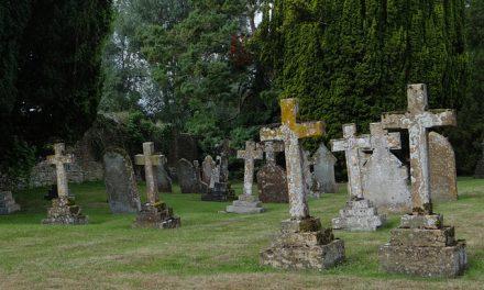 Pasieki na cmentarzu? Na razie tylko w Ameryce | www.pszczoly.eu