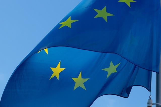 Trwają europejskie konsultacje na temat owadów zapylających. Zobacz jak wciąć w nich udział