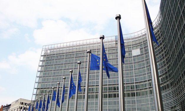 Parlament Europejski odesłał do poprawki przepisy dotyczące ochrony pszczół | Pszczoly.eu