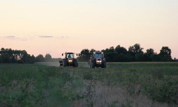Unia Europejska planuje ograniczenie stosowania pestycydów w rolnictwie