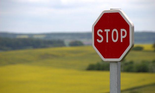1 września Francja wprowadziła zakaz stosowania 5 neonikotynoidów | Pszczoly.eu
