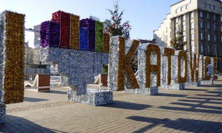 Katowice krytykowane za to, że chcą chronić pszczoły | Pszczoly.eu