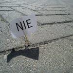 Polska bez pszczół? Protest przed Ministerstwem Rolnictwa i Rozwoju Wsi