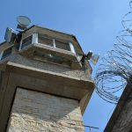 Więzienna pasieka pomaga w resocjalizacji więźniów