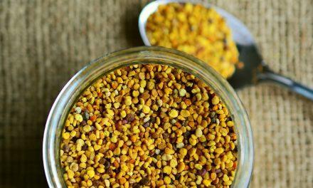 Dr Przygoński stworzył nowy sposób preparowania pyłku kwiatowego | Pszczoly.eu
