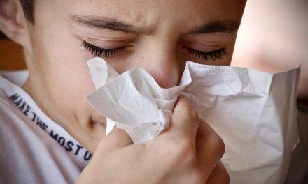 Propolis zmniejsza ryzyko infekcji górnych dróg oddechowych | Pszczoly.eu