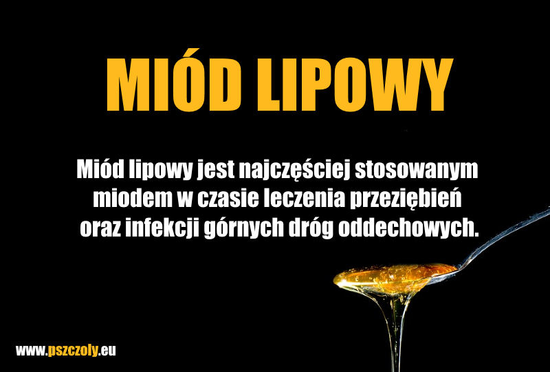 Miód lipowy – jakie są właściwości miodu lipowego | Pszczoly.eu