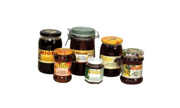 Miód spadziowy – charakterystyka i właściwości miodu spadziowego | Pszczoly.eu