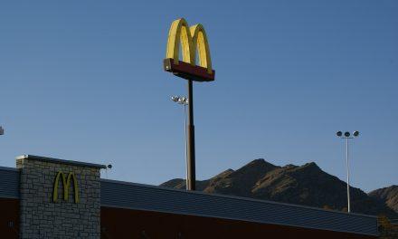 W Szwecji powstał McDonald's dla pszczół | Pszczoly.eu