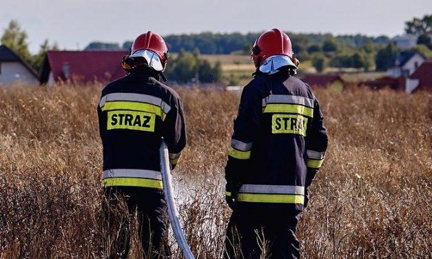 Kolejny raz w tym roku płonęły ule. Tym razem w Lubuskiem | Pszczoly.eu
